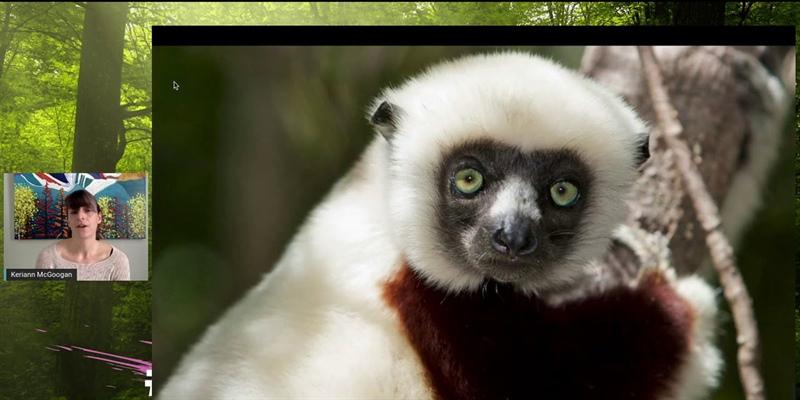 Women Blaze Trails: Chasing Lemurs in Madagascar with Keriann McGoogan